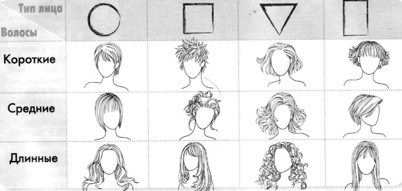 Типы причесок в зависимости от формы лица