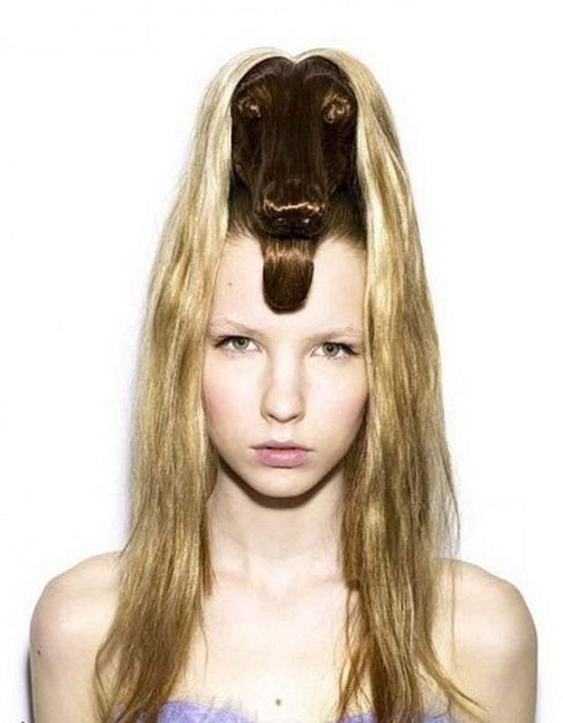 Еще одна необычная красивая прическа с собакой