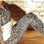 Леопардовые лосины с чем носить