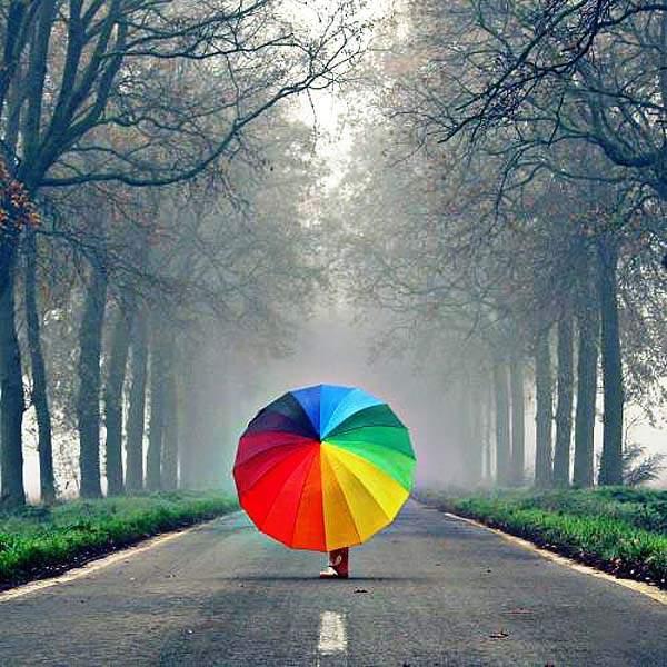 Image result for цветной зонтик